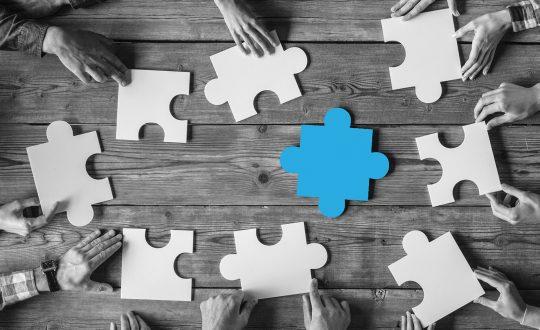 afiliacja-programy-partnerskie-sluzbie-wiekszej-sprzedazy