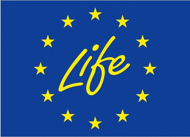 life - Oszczędzaj i wygrywaj, czyli o gamifikacji w energetyce
